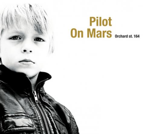 Pilot On Mars