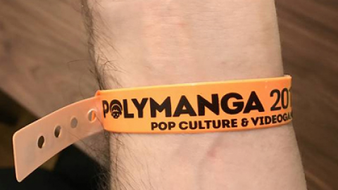 Delphine's Live – Polymanga 2018