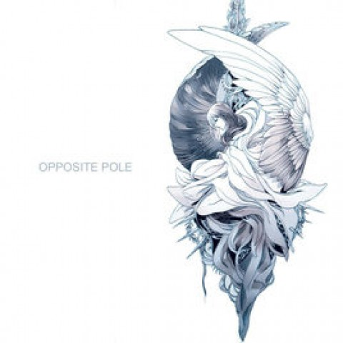Patrice's Live – Opposite Pole Production