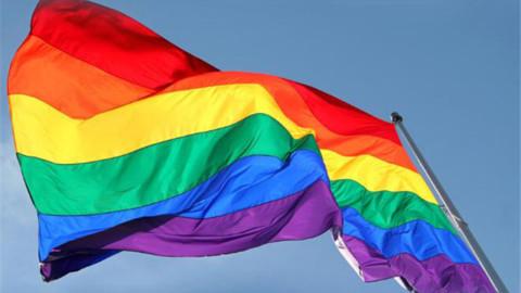 Patrice's Fédération ( LGBT )
