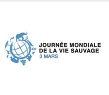 MCGJ : La Journée Mondiale de la Vie Sauvage –  3 Mars 2021