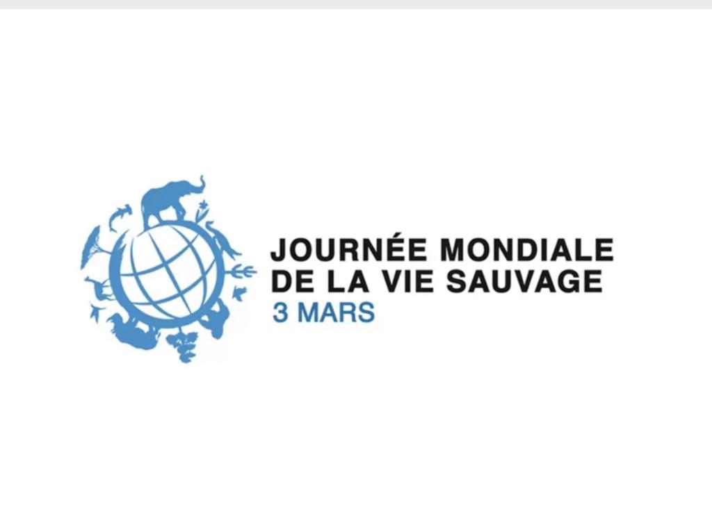 MCGJ : La Journée Mondiale de la Vie Sauvage -  3 Mars 2021
